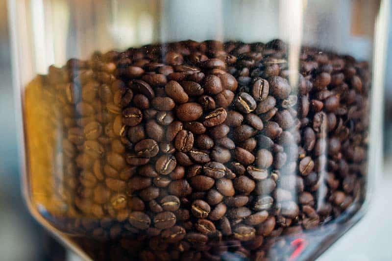 how to grind coffee beans with blender